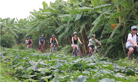 HANOI BICYCLE TOUR (5 HOURS)