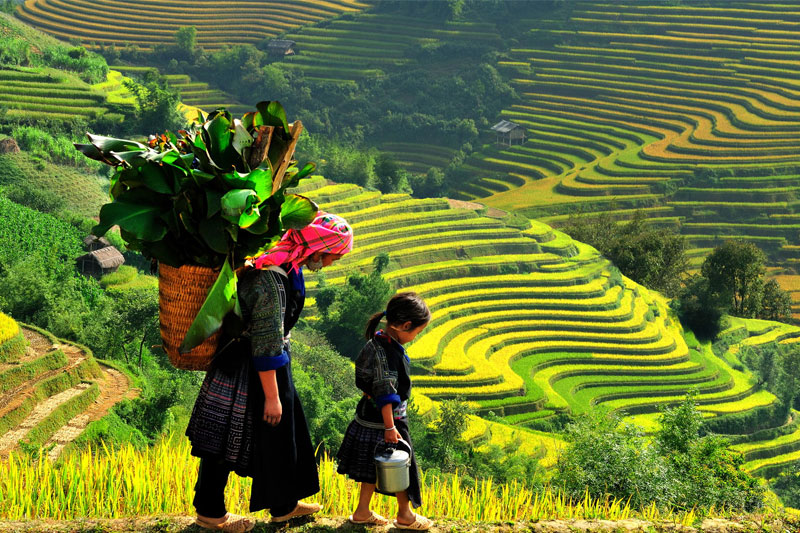 SAPA TOUR BY TRAIN - 2 DAYS 3 NIGHTS - HOTEL